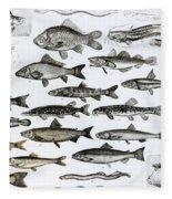 Ichthyology Fleece Blanket