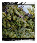 Icy Trees With Black And White Border Fleece Blanket