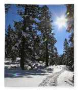 Idaho Blue Bird Day Fleece Blanket