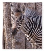 Idaho Falls - Tautphaus Park Zoo Fleece Blanket