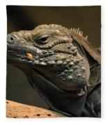 Iguana-7374 Fleece Blanket