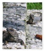 Iguana Bask In The Sun With You Fleece Blanket
