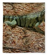 Iguana With A Smile Fleece Blanket