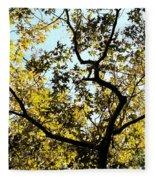 Illuminated Oak Tree Fleece Blanket