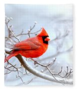 Img 2259-22 - Northern Cardinal Fleece Blanket
