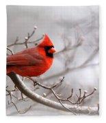 Img 2559-3 Fleece Blanket