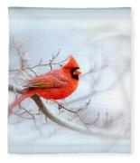Img 2559-35 Fleece Blanket