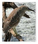 Immature Night Heron Fleece Blanket
