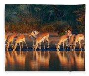 Impala Herd With Reflections In Water Fleece Blanket