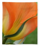 Imperfect Beauty Fleece Blanket