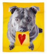 Imploring Staffie With A Sticky Note On His Mouth Fleece Blanket