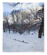 In Central Park Fleece Blanket