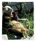 In Need Of More Sleep. Er Shun Giant Panda Series. Toronto Zoo Fleece Blanket