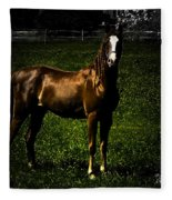 In The Corral 1 - Featured In Comfortable Art And Wildlife Groups Fleece Blanket