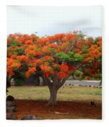 In The Shade Of The Poincianas Fleece Blanket