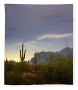In The Shadows Of The Superstitions  Fleece Blanket