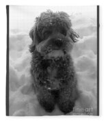In The Snow Fleece Blanket