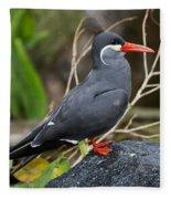 Inca Tern Fleece Blanket