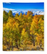 Independence Pass Autumn Colors Fleece Blanket
