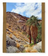 Indian Canyons View With Two Palms Fleece Blanket