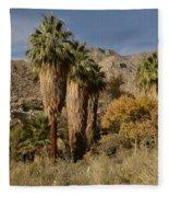 Indian Canyons Fleece Blanket