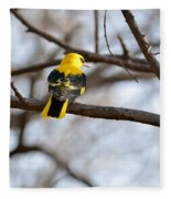 Indian Golden Oriole Fleece Blanket