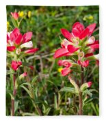 Indian Paintbrush Fleece Blanket
