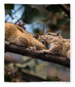 Indian Palm Squirrel Fleece Blanket