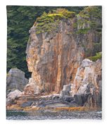 Indian Rock  Fleece Blanket