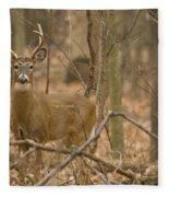 Indiana Buck  Fleece Blanket