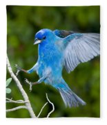 Indigo Bunting Alighting Fleece Blanket