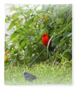 Indigo Bunting And Scarlet Tanager 2 Fleece Blanket