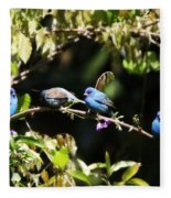 Indigo Bunting - Img 431-013 Fleece Blanket
