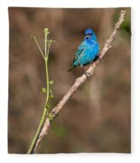 Indigo Bunting Portrait Fleece Blanket