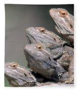 Inland Bearded Dragons Fleece Blanket