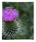 Insect On A Thistle Fleece Blanket