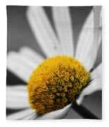 Intimate Daisy Fleece Blanket