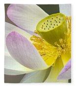 Intimate Sacred Lotus Bloom Fleece Blanket
