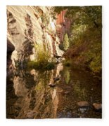 Into The Canyon  Fleece Blanket