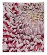 Introverted Fleece Blanket