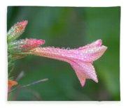Ipomopsis Rubra Fleece Blanket