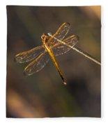 Iridescent Dragonfly Wings Fleece Blanket