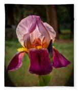 Iris In The Spotlight Fleece Blanket