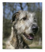 Irish Wolfhound Fleece Blanket