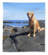 Island Dog Fleece Blanket