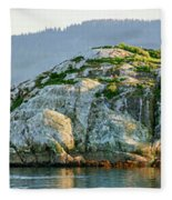 Island In A Lake, Glacier Bay National Fleece Blanket