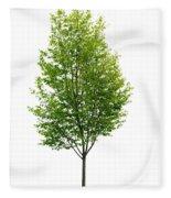 Isolated Young Tree Fleece Blanket