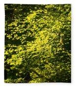 It's Autumn Time Fleece Blanket