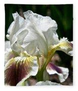 Ivory Sapphire Fleece Blanket