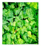Ivy Fleece Blanket